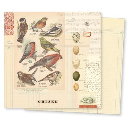 19365-conservatoryPP-aviary