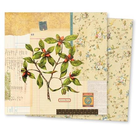 19368-conservatoryPP-flora