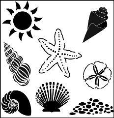 TCW196 Seashells