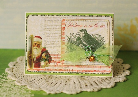 Christmas Cards - Sue Tonga.