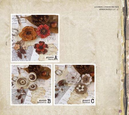 PrimaCha-Winter2012-Catalog-219