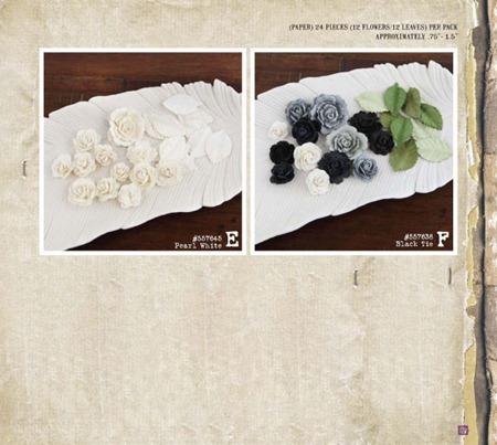 PrimaCha-Winter2012-Catalog-183