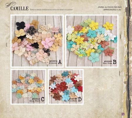 PrimaCha-Winter2012-Catalog-193