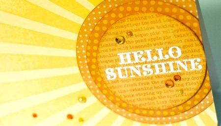 032912-Sunshine-JenMcGuire-1