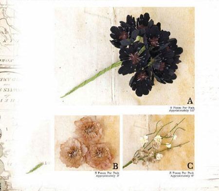 Prima Winter 13 Catalog-20