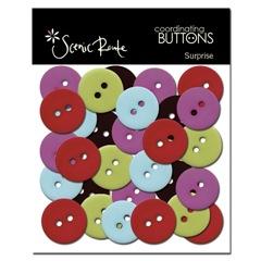 SRT768 A Surprise Buttons Image